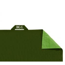 housse de pouf big g vert acheter ce produit au meilleur prix. Black Bedroom Furniture Sets. Home Design Ideas