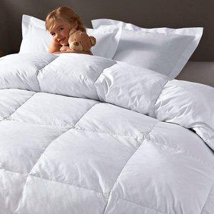 couette naturelle double enveloppe 85 duvet acheter ce produit au meilleur prix. Black Bedroom Furniture Sets. Home Design Ideas