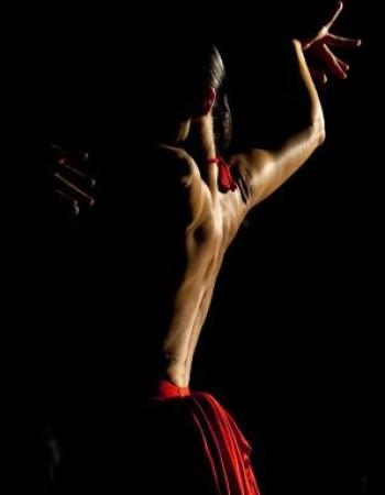 Flamenco olé