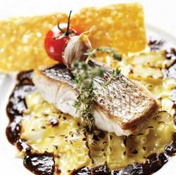 Denti sur peau cuisson à la plancha, lasagnettes à la Fourme d'Ambert, jus de daube de joues de boeuf au vin rouge